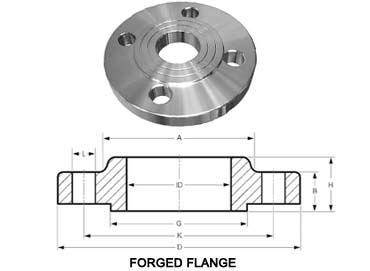 F316L Stainless Steel Forged Flanges
